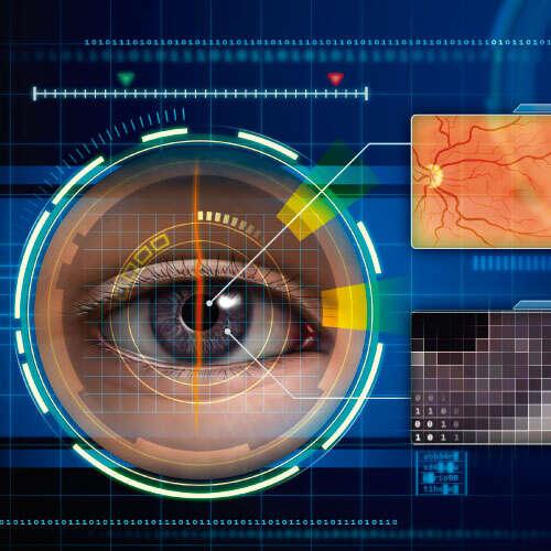 PER (Programa estudio de riesgo enfermedad retinal)