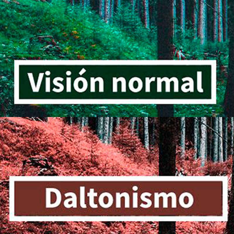 ¿Que es daltonismo?